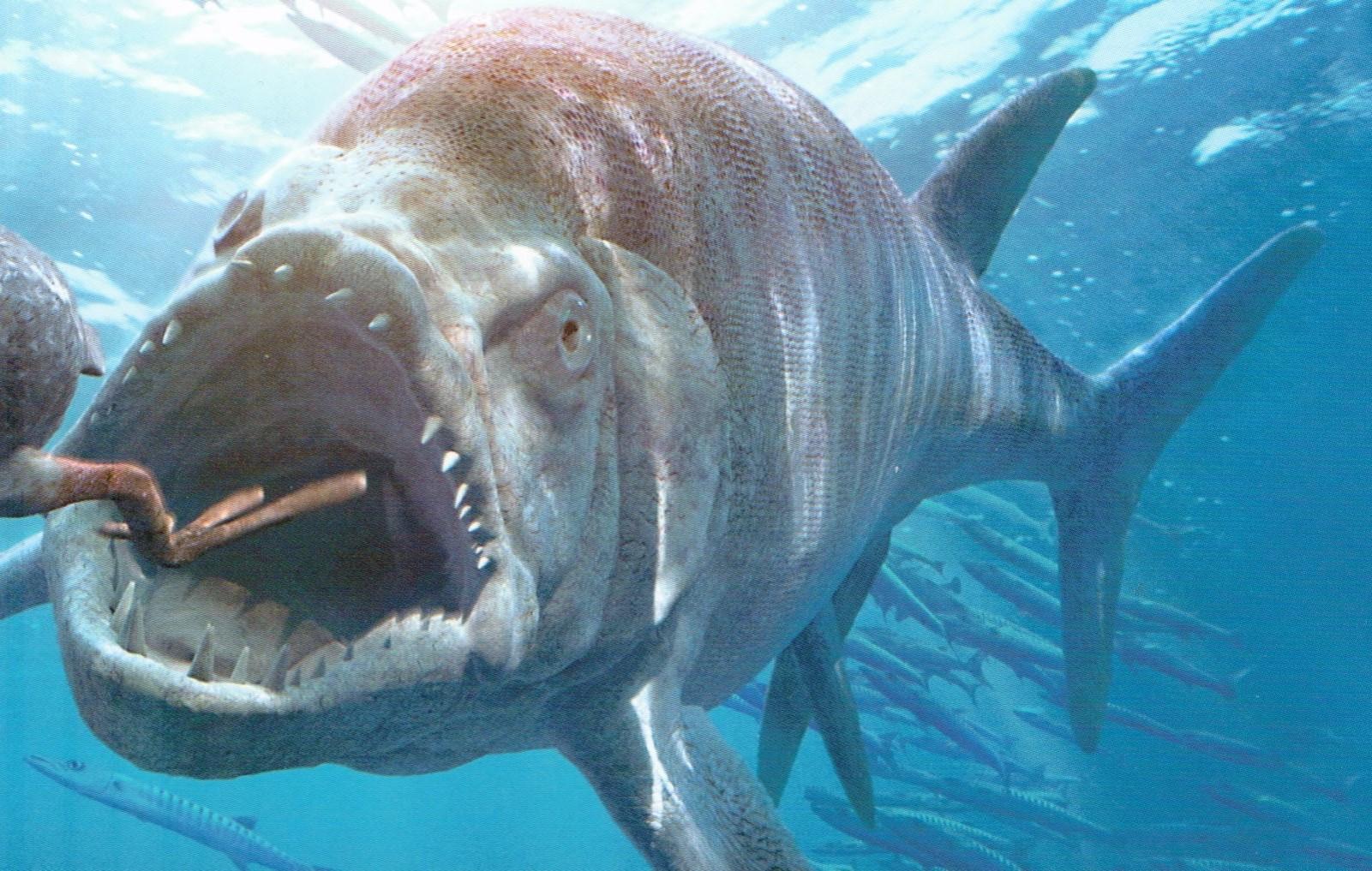 Óriás ragadozó hal